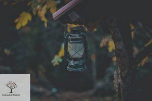 lampara solar de jardin